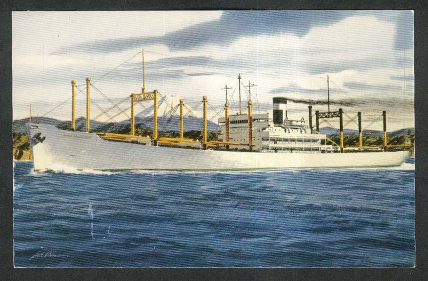 SS Japan Transport in Japanese Waters Mount Fuji postcard 19