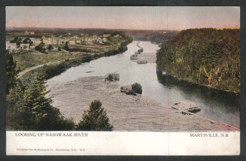 Looking up Nashwaak River Marysville New Brunswick Canada postcard 1906
