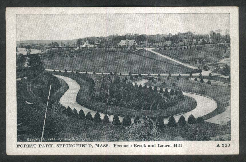 Pecousic Brook & Laurel Hill Forest Park Springfield MA postcard 1910
