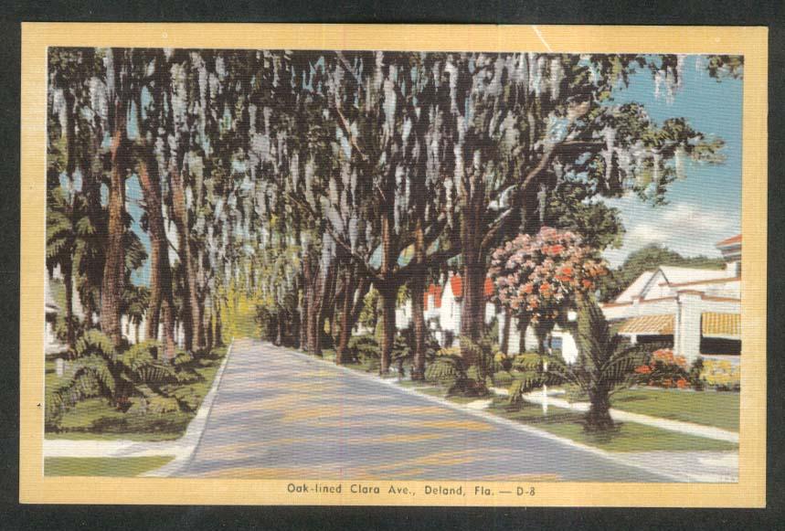 Oak-lined Clara Ave Deland FL postcard 1930s