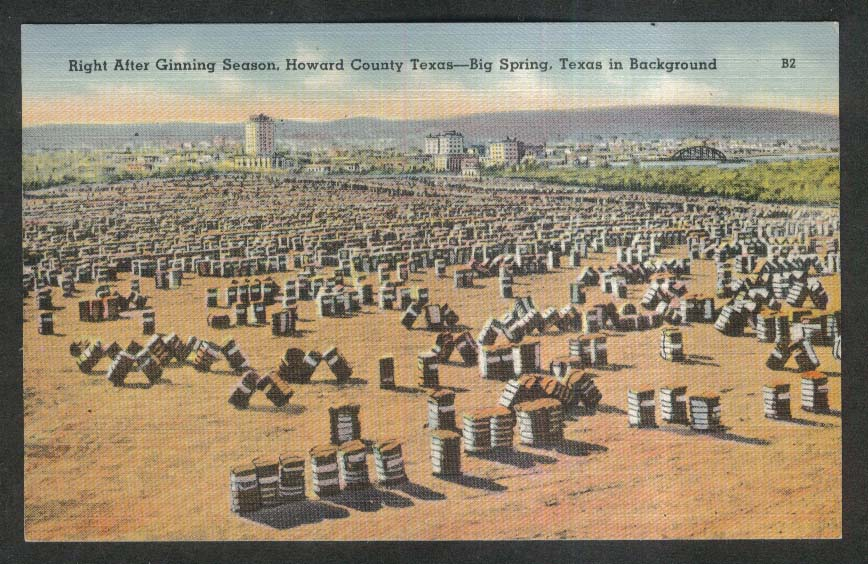 Right After Ginning Season Big Spring Howard County TX postcard 1930s