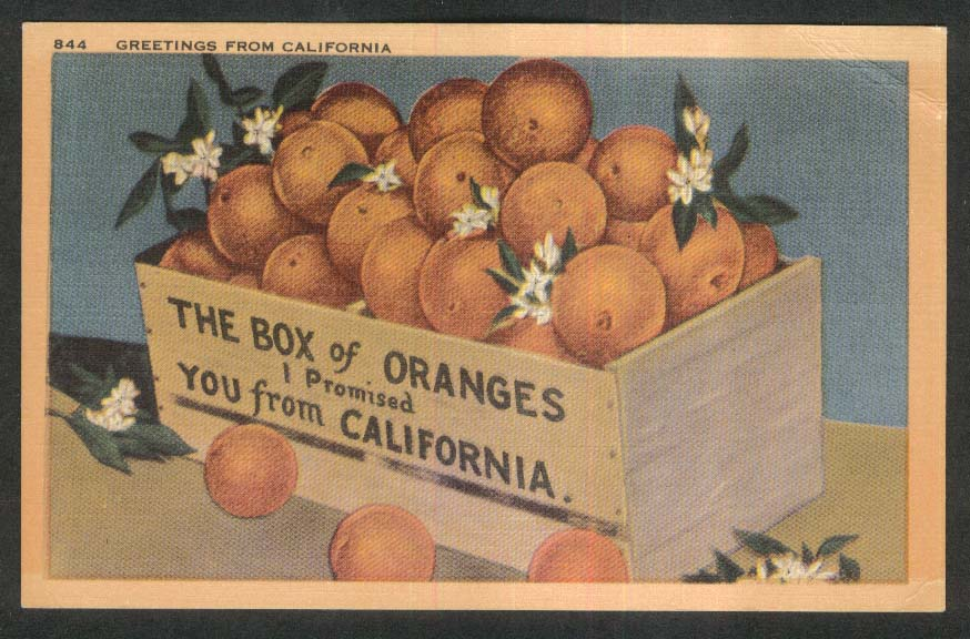 Box of Navel Oranges from California CA postcard 1930s