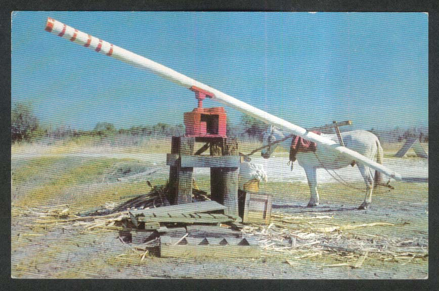 The Old Sugar Mill Bowling Green FL postcard 1950s
