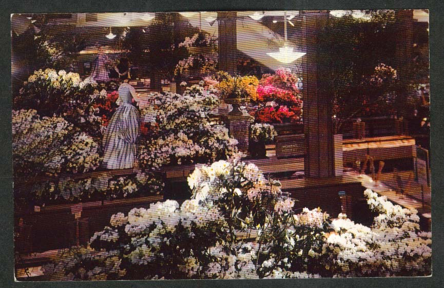 Macy's Annual Flower Show Mother's Day postcard 1950s