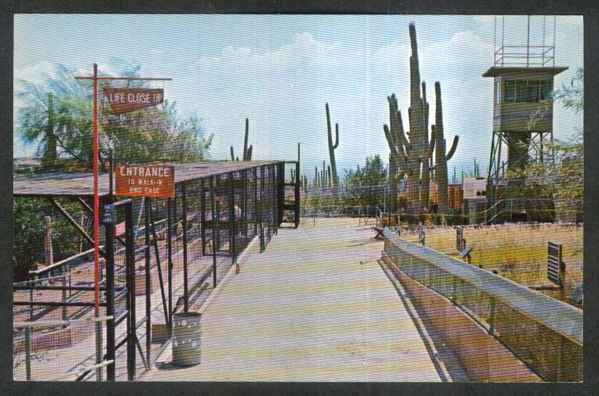Bird Enclosures & Audio Control Tower Sonora Desert Museum AZ postcard 1950s