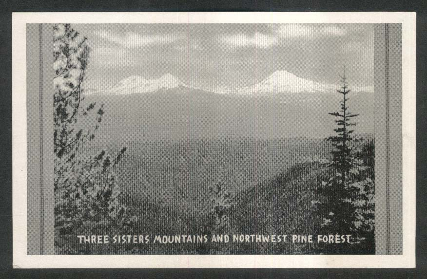 Three Sisters Mountains & Northwest Pine Forest Alberta Canada postcard 1950s