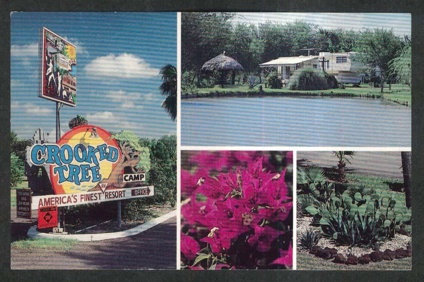Crooked Tree Campland Brownsville TX postcard 1970s