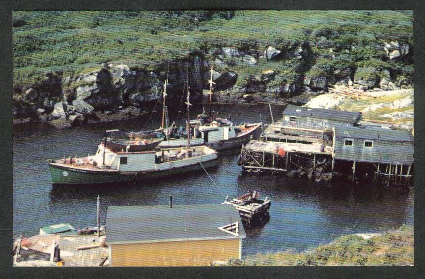 Fox Roost near Port aux Basque Newfoundland Canada postcard 1950s