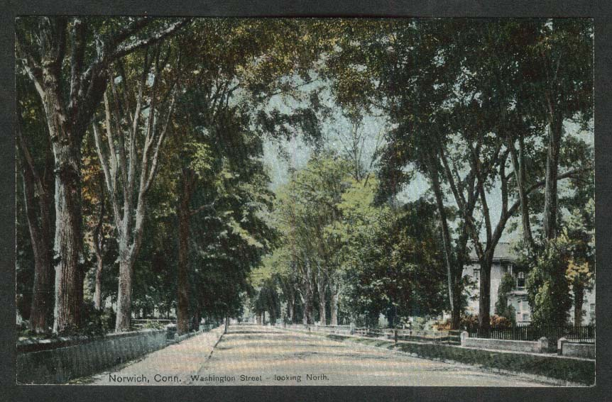Washington Street looking North Norwich CT postcard 1910s