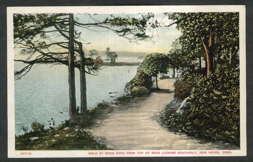 Walk at Savin Rock looking South New Haven CT postcard 1910s