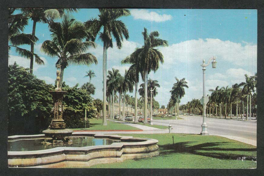Looking East Royal Poinciana Way Palm Beach FL postcard 1967