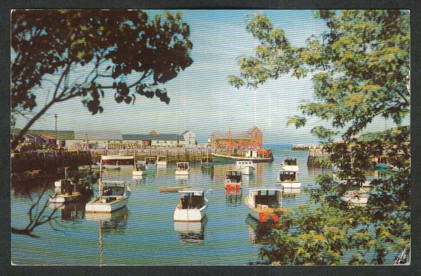 View of Rockport Harbor Motif #1 MA postcard 1958