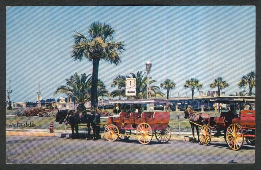 Colorful Carriages St Augustine FL postcard 1960