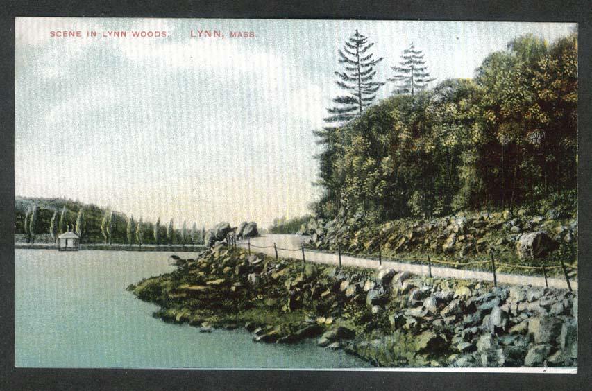 Scene in Lynn Woods Lynn MA postcard 1910s