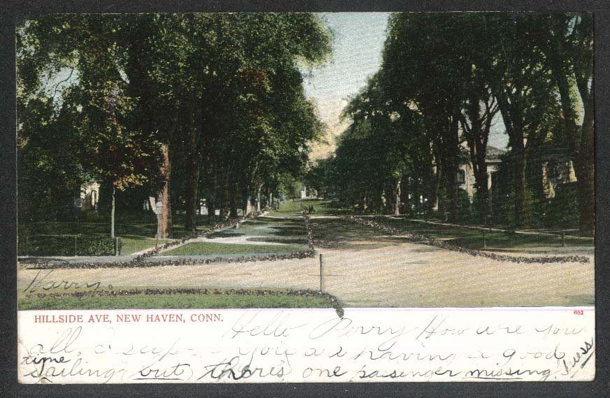 Hillside Avenue New Haven CT glitter added undivided back postcard 1906