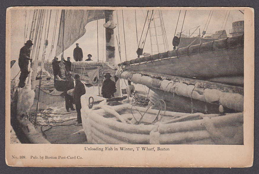 Image for Unloading Fish in Winter T Wharf Boston MA undivided back postcard 1900s