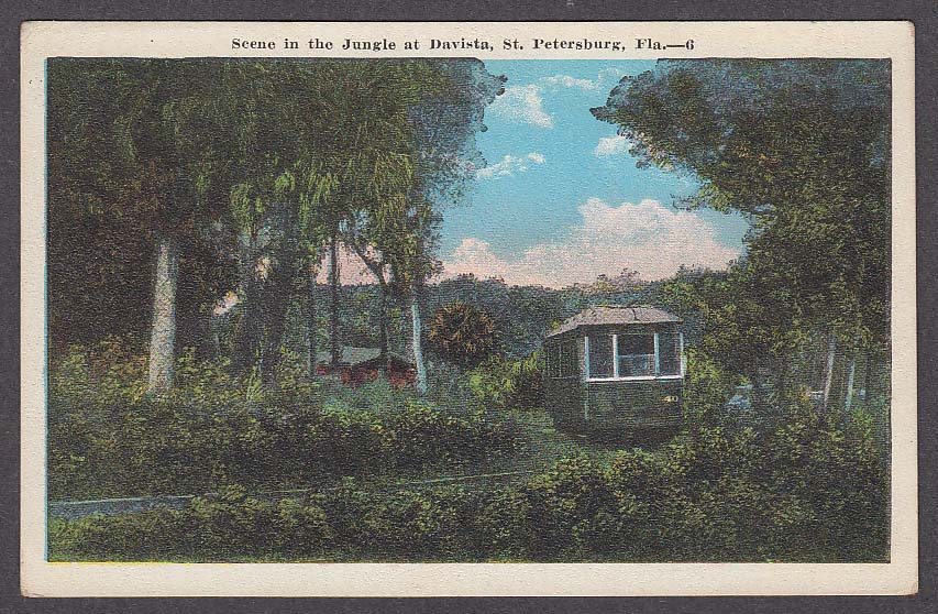 Image for Scene in the Jungle at Davista St Petersburg FL postcard 1920s