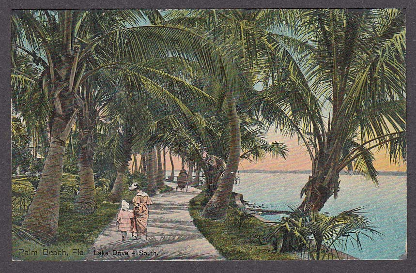Image for Lake Drive South Palm Beach FL postcard 1908
