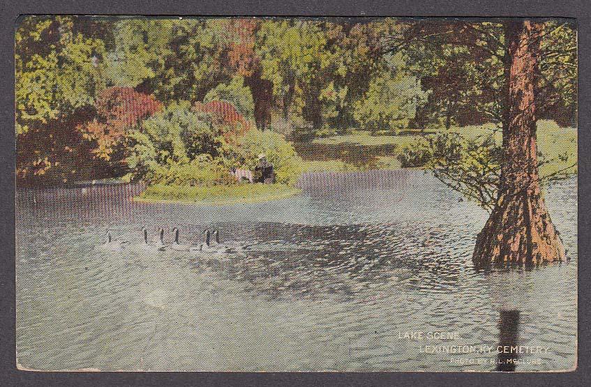 Image for Lake Scene Lexington KY Cemetery undivided back postcard 1911