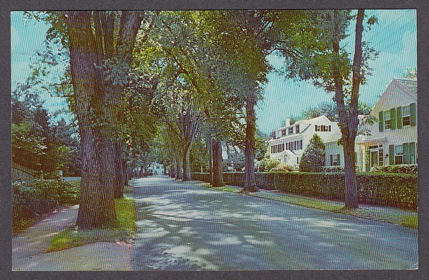 Image for Main Street Centerville Cape Cod MA postcard 1965