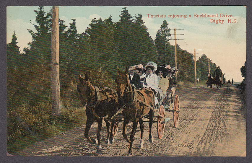 Image for Tourists enjoying a Buckboard Drive Digby Nova Scotia Canada postcard 1910s