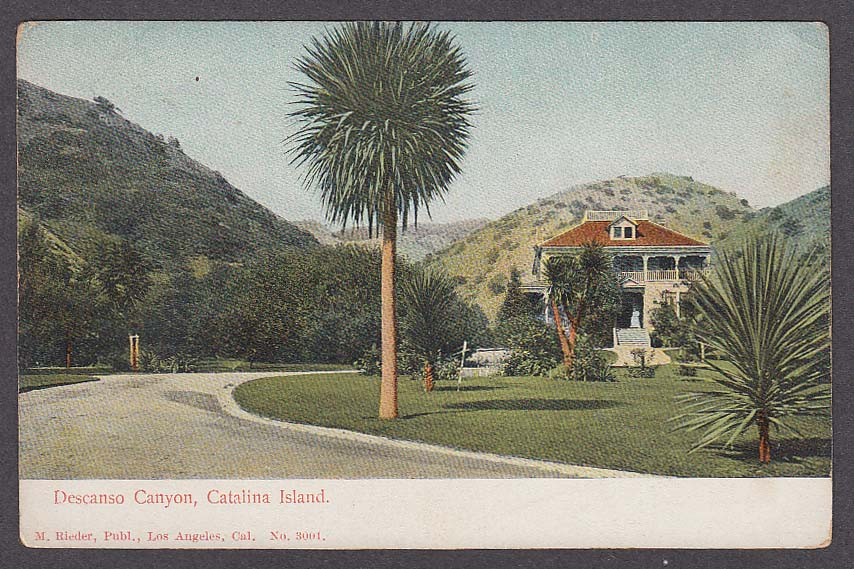 Descanso Canyon Catalina Island CA undivided back postcard 1900s