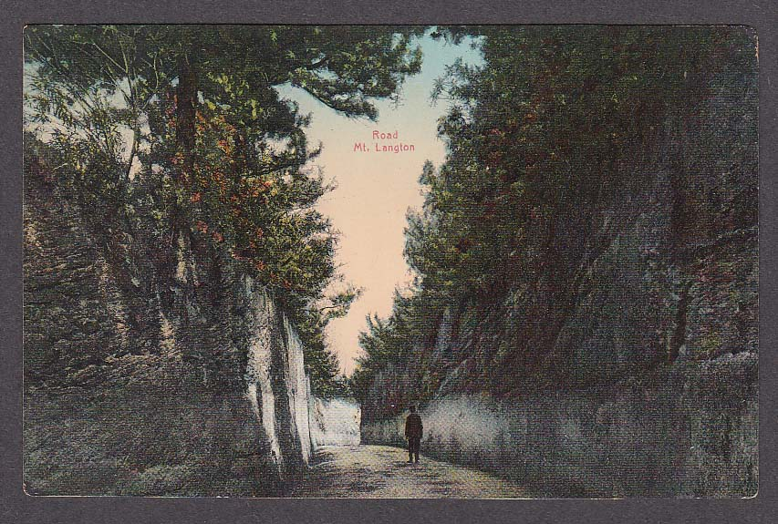 Road Mt Langton Bermuda postcard 1910s