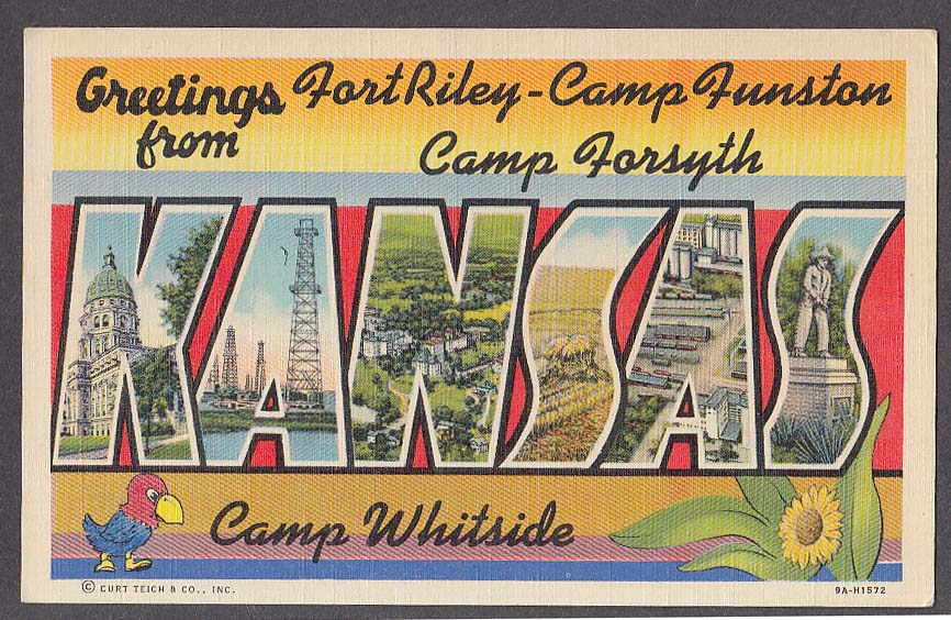 Greetings from Fort Riley Camp Funston Camp Forsyth KANSAS large letter postcard