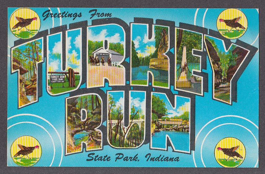Greetings from turkey run state park in large letter postcard 1950s m4hsunfo