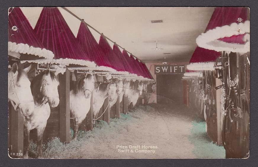 Prize Draft Horses Swift & Company RPPC postcard 1910s