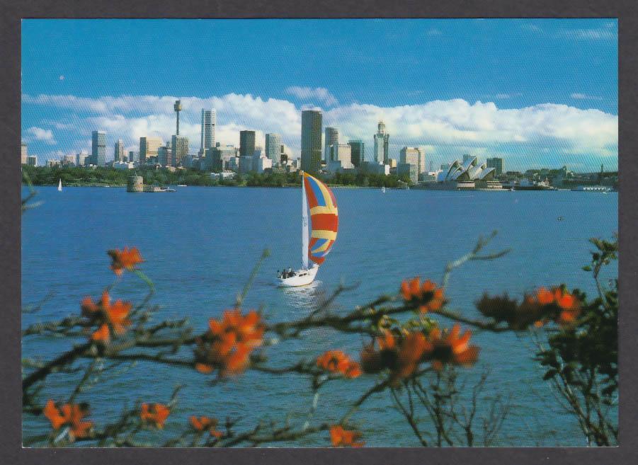 Sydney Skyline Harbor Opera House Cremorne Point Australia postcard 1970s