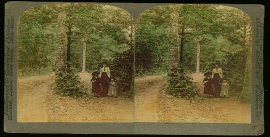 Goat Island Niagara NY stereoview 1899?