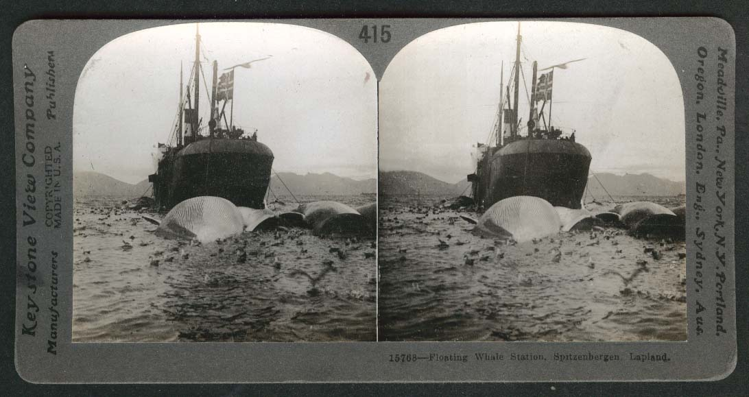 Floating Whale Station Spitzenbergen Lapland stereoview