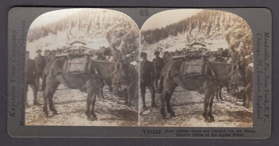 Italian Guns carried up Alps on horseback WWI Keystone stereoview 1920s