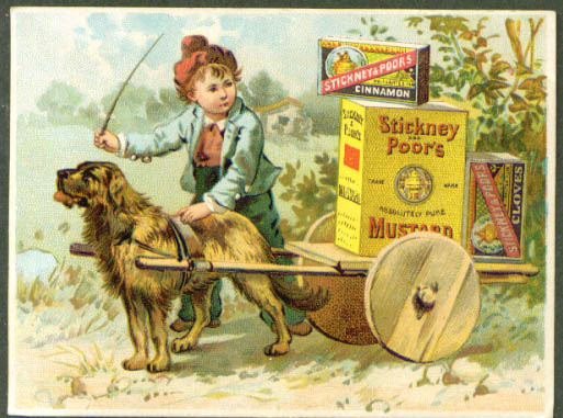 Image for Stickney & Poor's Mustard Cinnamon & Cloves dog cart tradecard 1880s