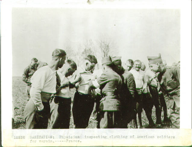 Image for Vermin inspection US troops France 1918 pic